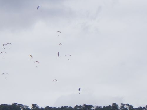 gaggles of gliders over Valle